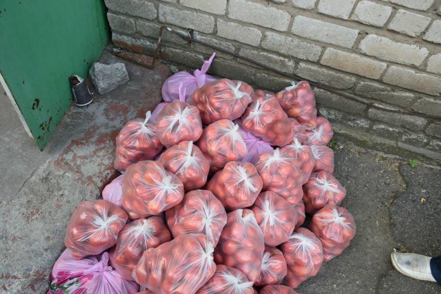 Вынужденным переселенцам, живущим в Николаеве, передали гуманитарную помощь (ФОТОРЕПОРТАЖ), фото-2