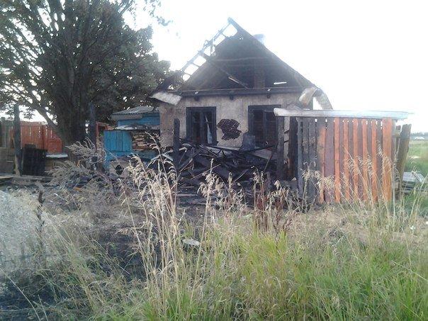 В гродненском приюте для бездомных животных произошел пожар: требуется помощь неравнодушных (фото) - фото 8