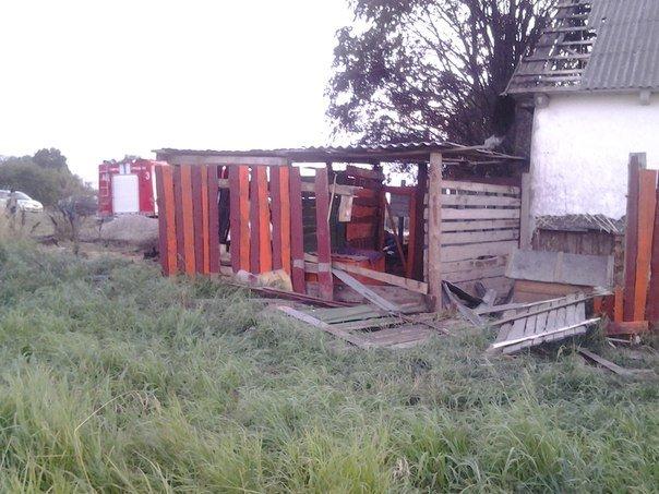 В гродненском приюте для бездомных животных произошел пожар: требуется помощь неравнодушных (фото) - фото 9