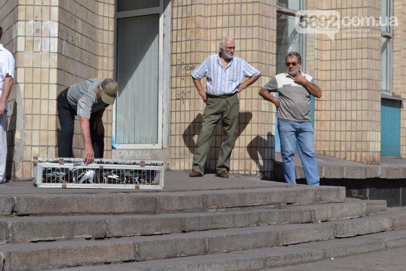 Днепродзержинск отметил День Независимости и День флага Украины, фото-13