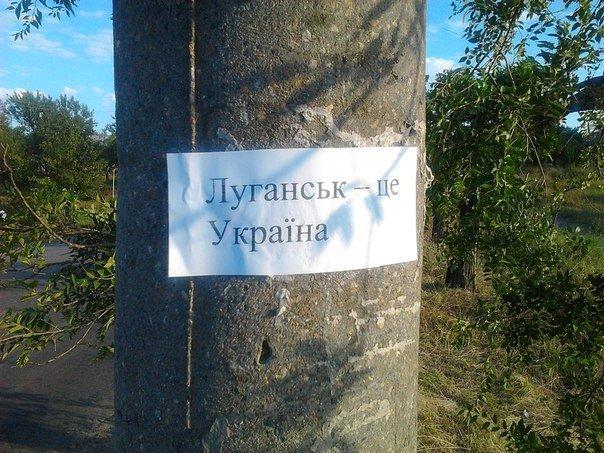 В Луганске накануне Дня Независимости Украины расклеили патритические надписи (ФОТОФАКТ) (фото) - фото 1
