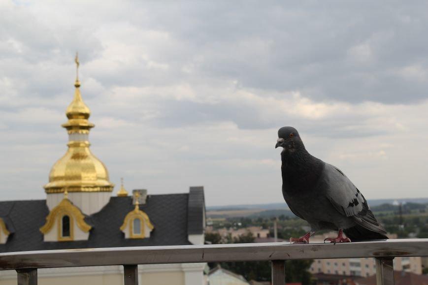 Ближе к Богу. Уикенд в Свято-Успенской Почаевской Лавре провел наш фотокорреспондент (ФОТО), фото-9