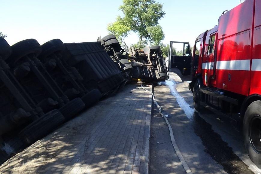 В Белгородской области перевернулся «КамАЗ» с поросятами, ни одно животное не пострадало (фото) - фото 1