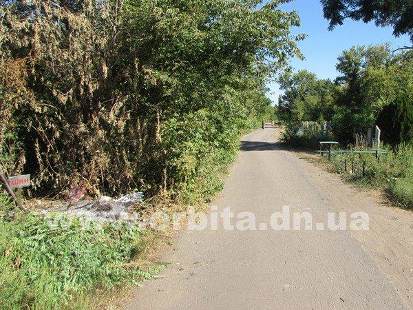 В Красноармейске жители обнаружили, что кладбище заминировано (фото) - фото 1