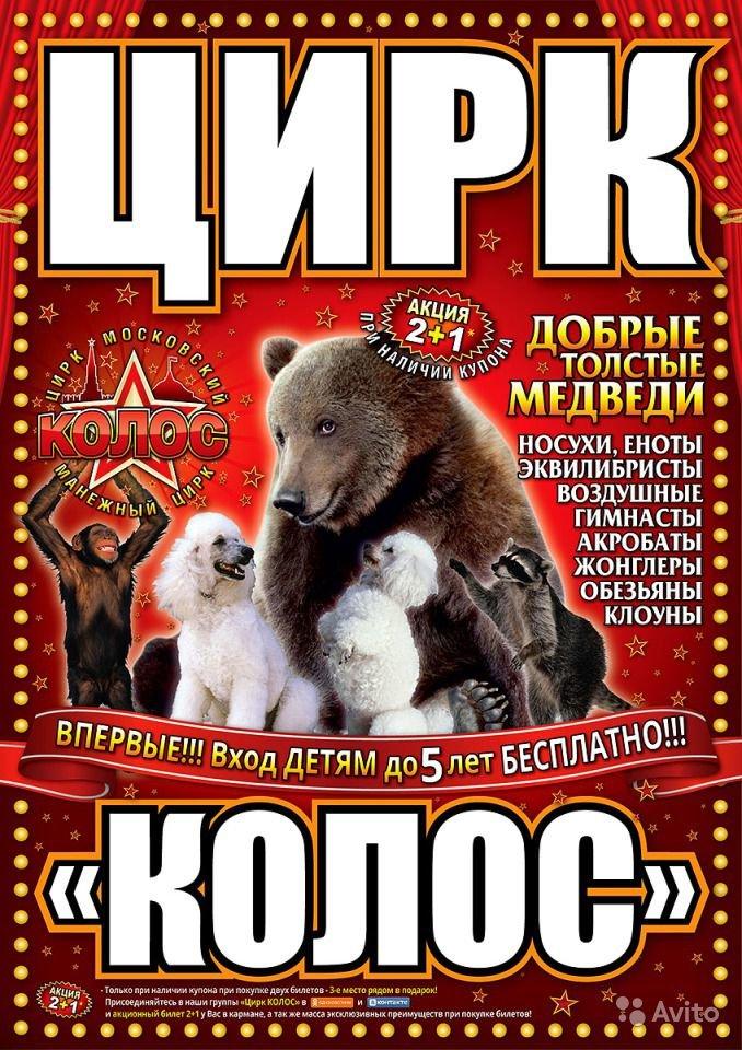 Московский манежный цирк «Колос» (фото) - фото 1