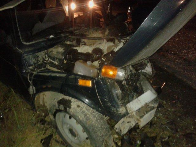На Прикарпатті іноземець скоїв ДТП, внаслідок якої постраждало 6 осіб (ФОТО) (фото) - фото 1
