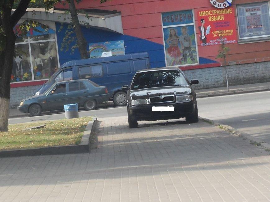 Чергове хамство від полтавських водіїв. Фотофакт (фото) - фото 1