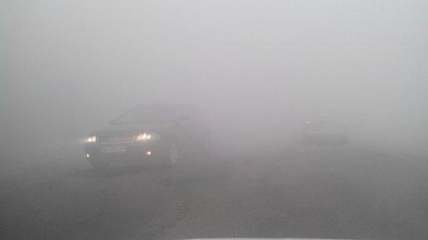 Дим від пожежі на рівненському полігоні спровокував ДТП (фото) - фото 1