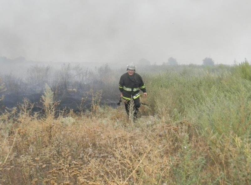 На Херсонщине пожар чуть не добрался до жилых объектов (фото) - фото 1
