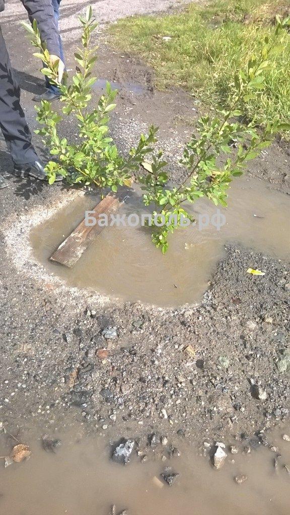 В южной части Полевского девочка провалилась в яму с водой (фото) - фото 2