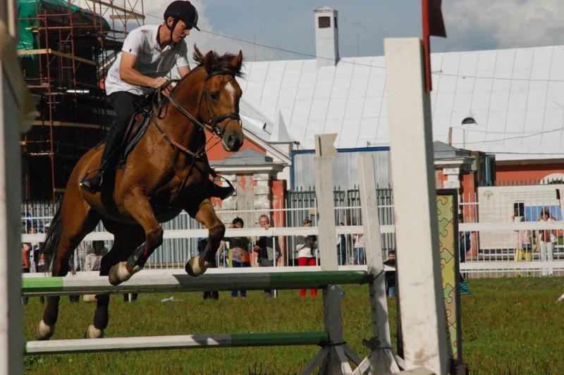Horse_history28