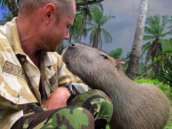 Рівненський мандрівник знімає фільми-аналоги «ВВС. Жива природа» (фото) - фото 8