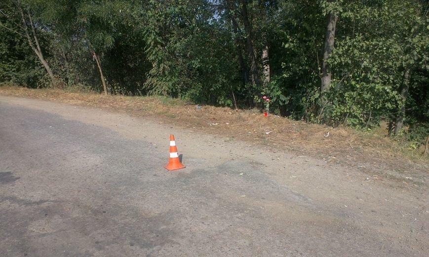 Поворот у селі Монастирчани виявився смертельним для мотоцикліста (ФОТО) (фото) - фото 3