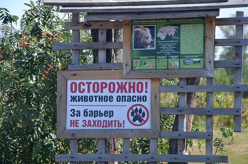 Носорогие. В Старооскольском зоопарке селятся исчезающие виды животных (фото) - фото 2
