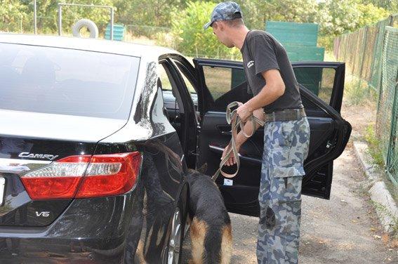 Служебная собака нашла оружие в админздании Николаева  (ФОТО+ВИДЕО) (фото) - фото 1