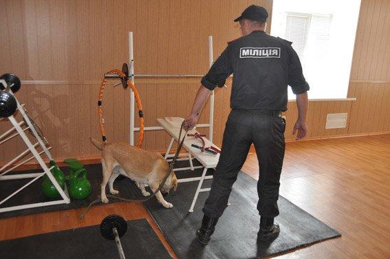 Служебная собака нашла оружие в админздании Николаева  (ФОТО+ВИДЕО) (фото) - фото 2