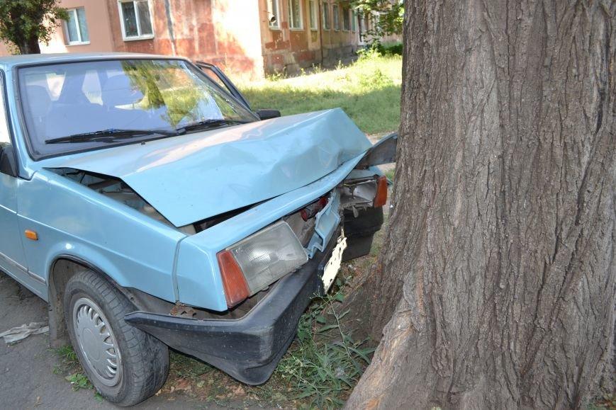 Криворожанин устроил ралли по Соцгороду и затормозил об дерево (ФОТО), фото-7
