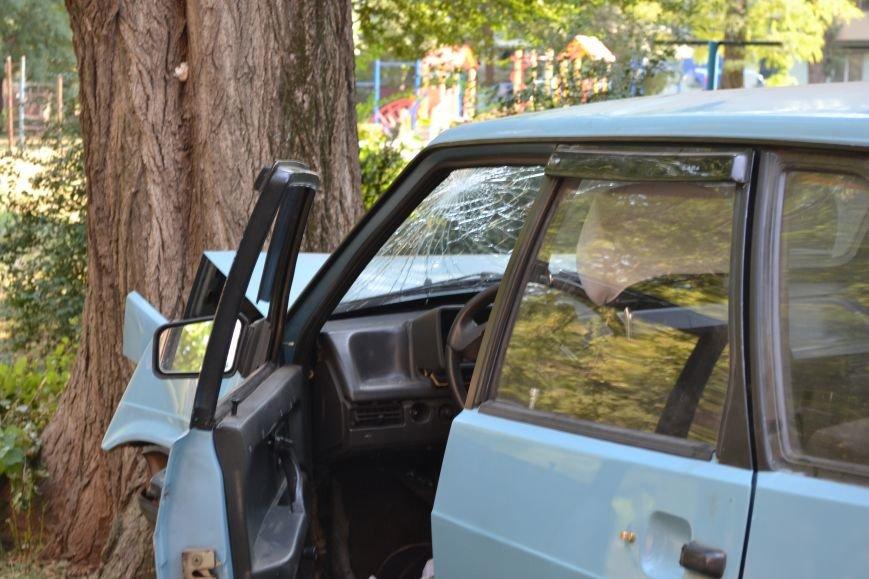 Криворожанин устроил ралли по Соцгороду и затормозил об дерево (ФОТО), фото-10