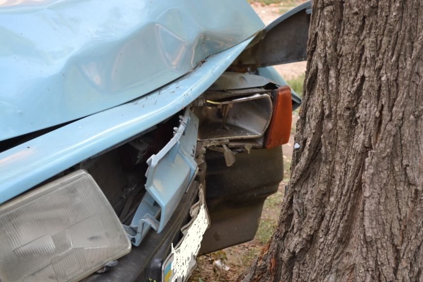 Криворожанин устроил ралли по Соцгороду и затормозил об дерево (ФОТО), фото-4