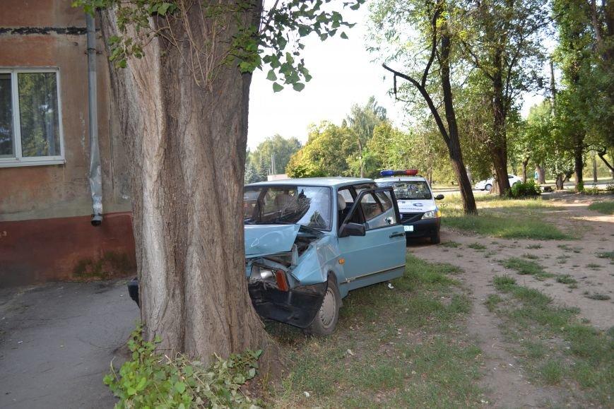 Криворожанин устроил ралли по Соцгороду и затормозил об дерево (ФОТО), фото-13