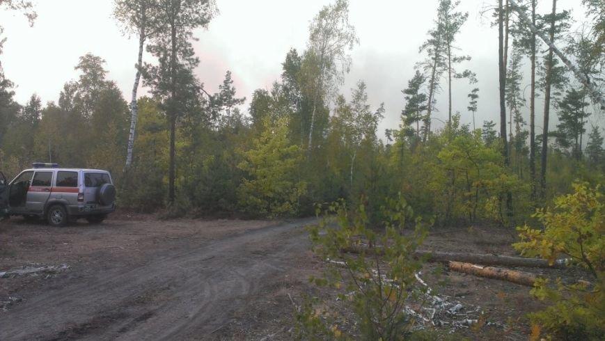 Лесной пожар под Киевом тушат с помощью авиации (ФОТО, ВИДЕО) (фото) - фото 3