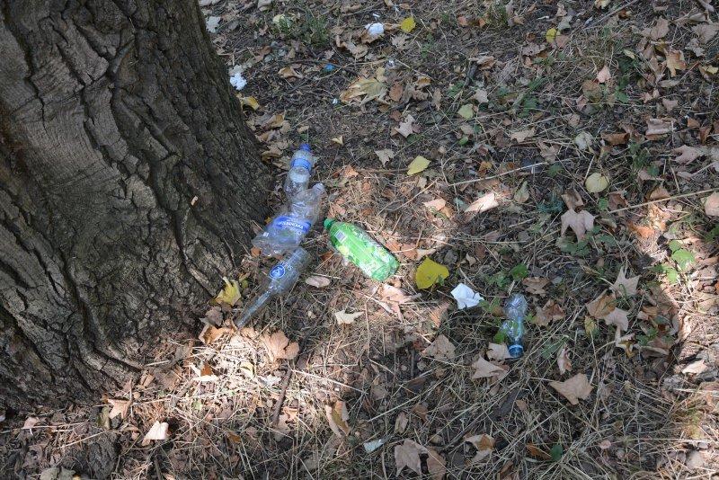 Парк Шіллера у Чернівцях забруднюють місцеві жителі, фото-1