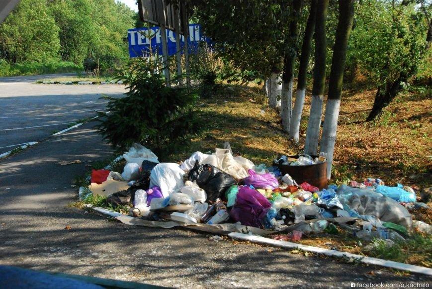 Тернопільщина зустрічає туристів... горою сміття, фото-2