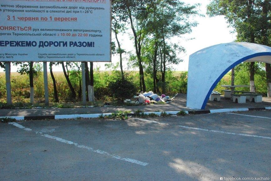 Тернопільщина зустрічає туристів... горою сміття, фото-3