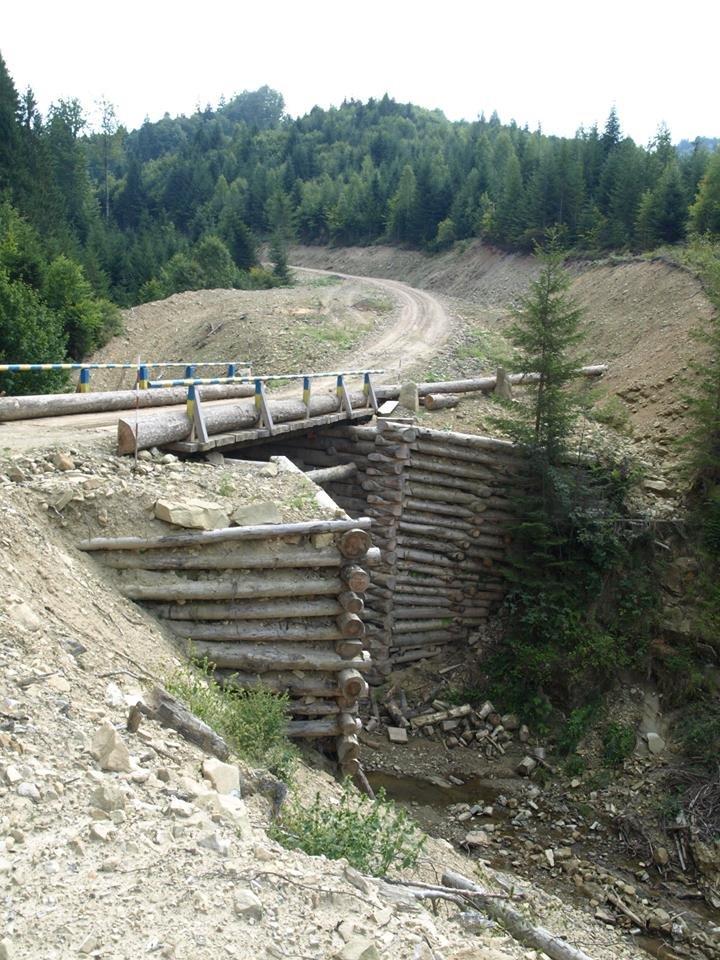 У лісах Буковини побудували новий міст і три дороги (фото) - фото 1