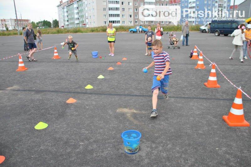 Пушкинский район подводит итоги летней спортивной спартакиады (фото) - фото 2