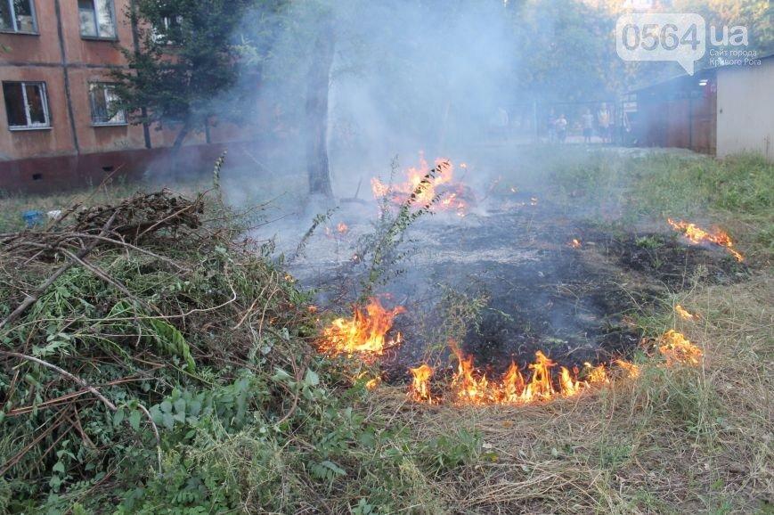 Кривой Рог накрыло густым дымом, бойцы 17 бригады вернулись из АТО, а неизвестные подожгли сухостой и напали на фотокорреспондента (фото) - фото 1