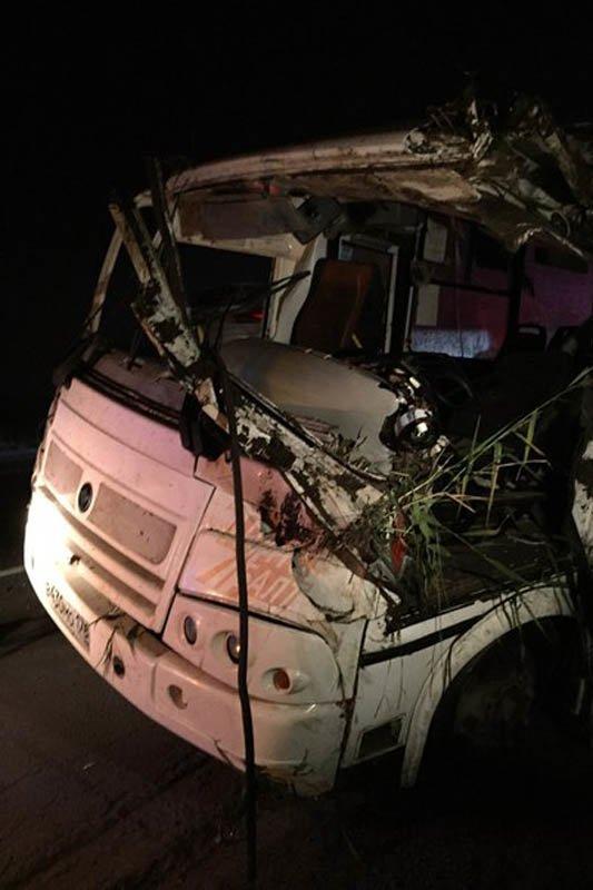 Недостаточная освещенность Московского шоссе стала одной из причин гибели человека (фото) - фото 1