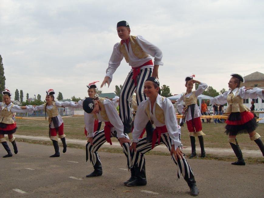 Николаевцы вывели своих четырехлапых товарищей на модный показ (ФОТОРЕПОРТАЖ) (фото) - фото 1
