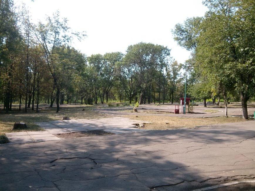 Мариупольцев возмутило продолжением уничтожения деревьев в Приморском парке (ФОТО) (фото) - фото 1