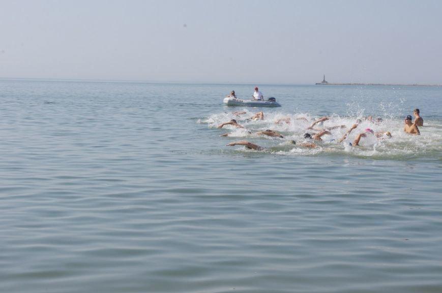 Чемпионат Украины по плаванию стартовал в Бердянске (фото) - фото 7