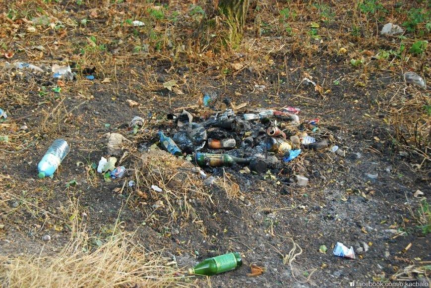 Купу сміття при в'їзді в Тернопільську область... переховали, фото-2