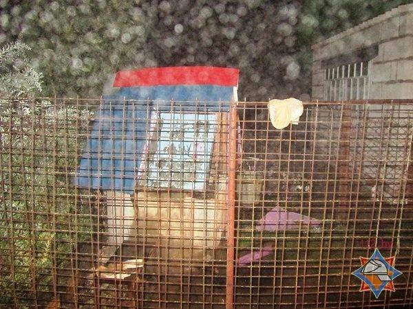 В Гродненском районе мужчина застрял в 8-метровом колодце (фото) - фото 1