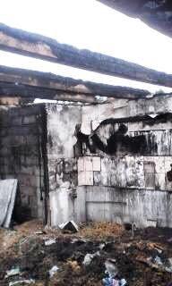 У бойца АТО на Сумщине сгорел дом. Живет с детьми в палатке  (ФОТО), фото-2