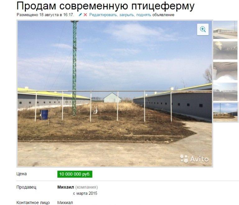 Ульяновская «Цыпочка» продается (фото) - фото 1