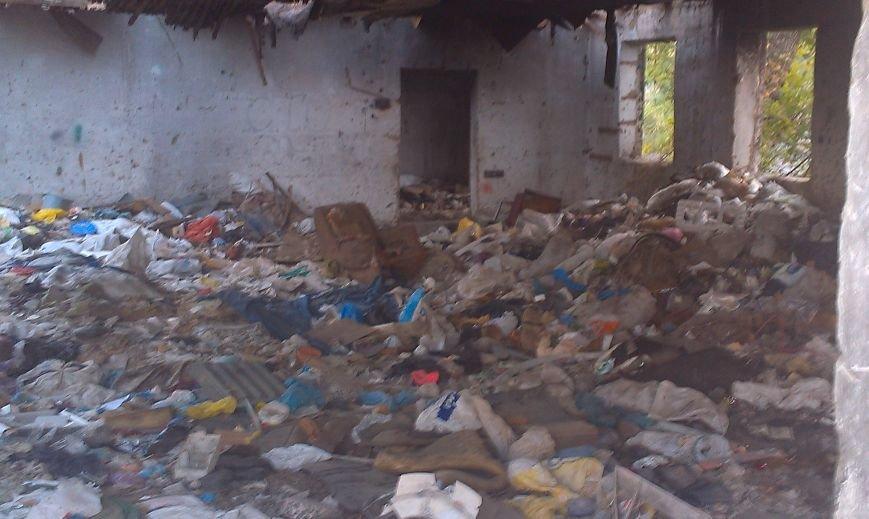 Запорожцы жалуются на свалку возле дома (ФОТО) (фото) - фото 5