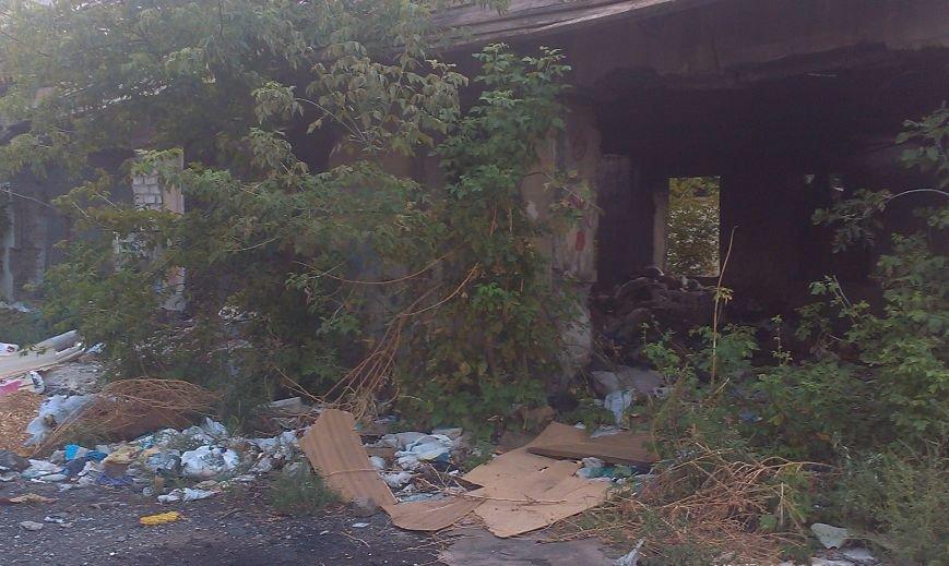 Запорожцы жалуются на свалку возле дома (ФОТО) (фото) - фото 2