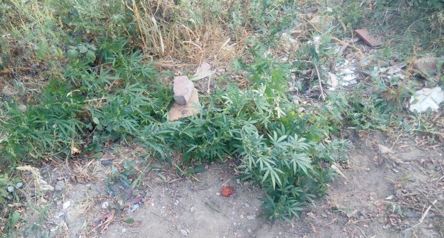 Славянск наркоторговец фото 2