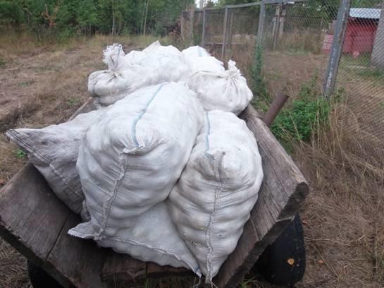 Двое мужчин вывозили яблоки из Чернобыльской зоны (ФОТО) (фото) - фото 2