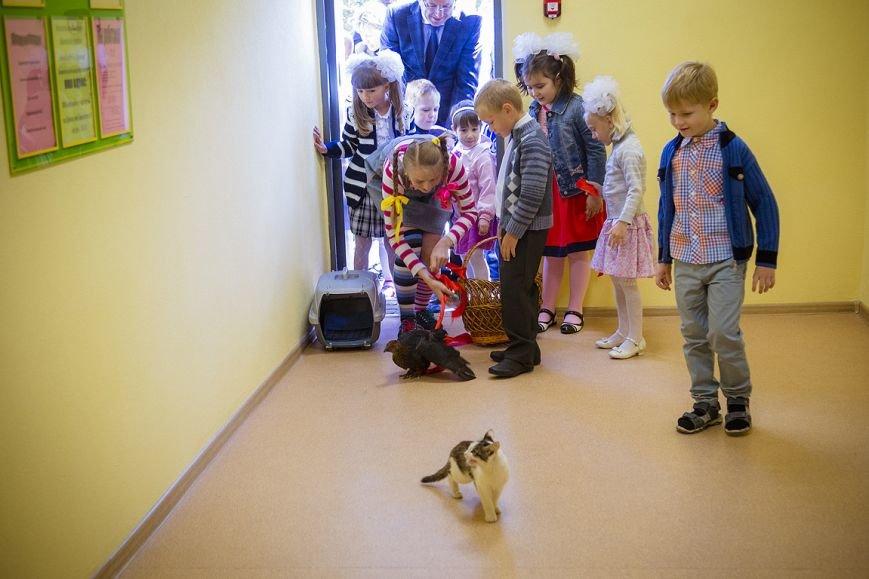 В Белгородском районе открылись четыре новых школы и детский сад (фото) - фото 2