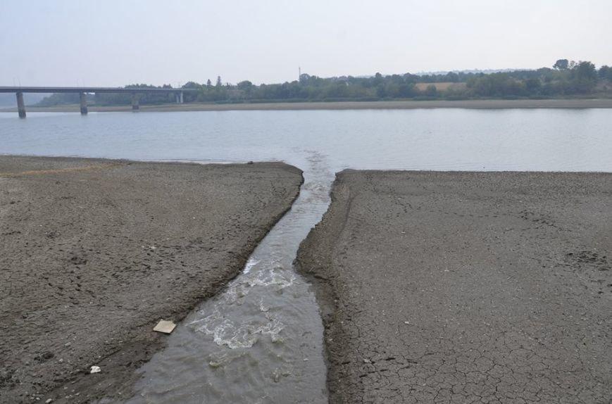 Рівень води у Дністрі на території Буковини упав до критичної точки (ФОТО), фото-2