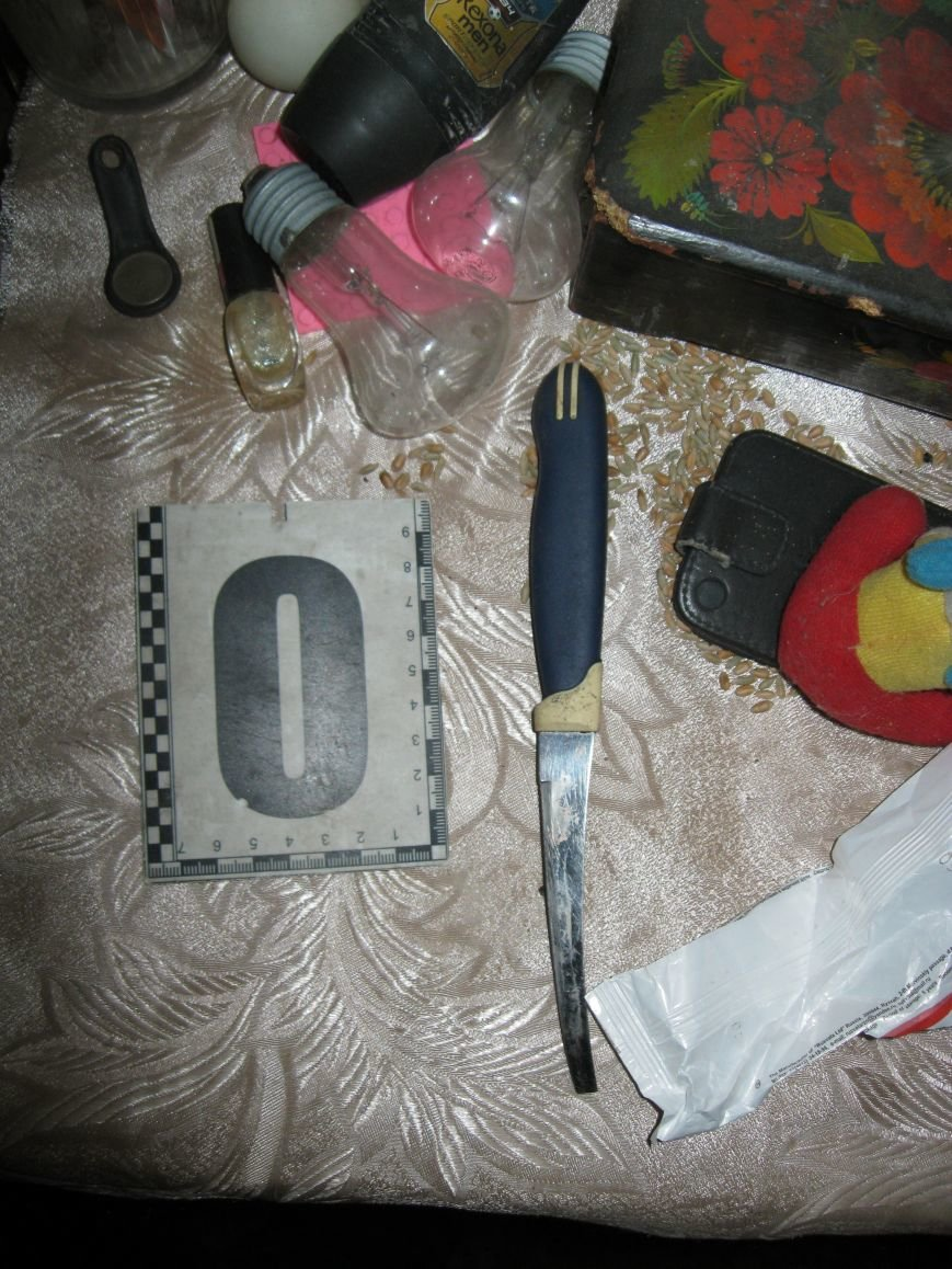 В Днепродзержинске мужчина из ревности ранил ножом собутыльника, фото-3