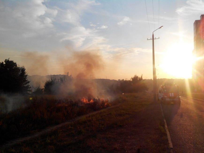 Криворожане на  Восточном задыхаются из-за горящего сухостоя (ФОТО) (фото) - фото 1