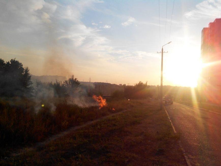Криворожане на  Восточном задыхаются из-за горящего сухостоя (ФОТО), фото-4