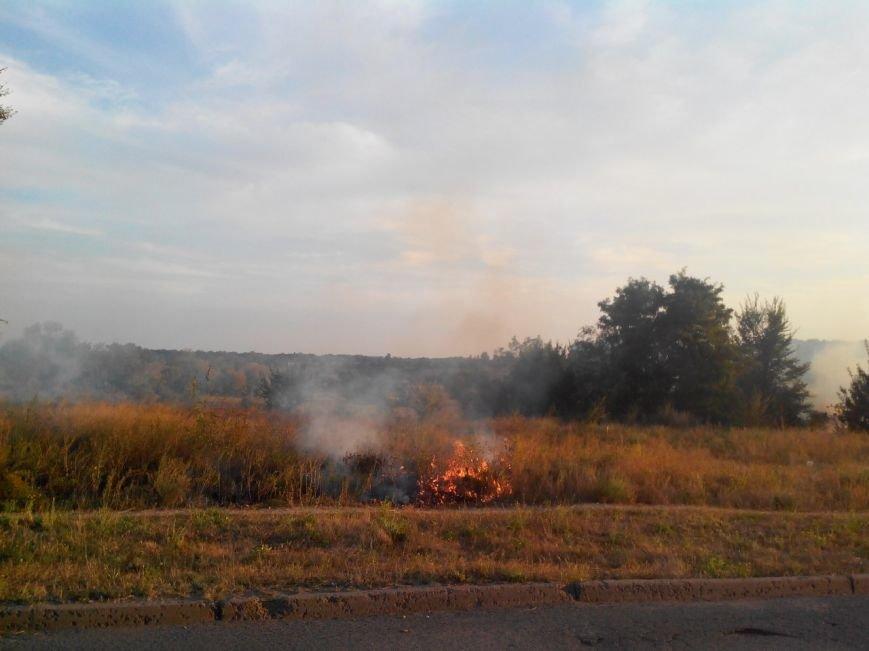 Криворожане на  Восточном задыхаются из-за горящего сухостоя (ФОТО), фото-2