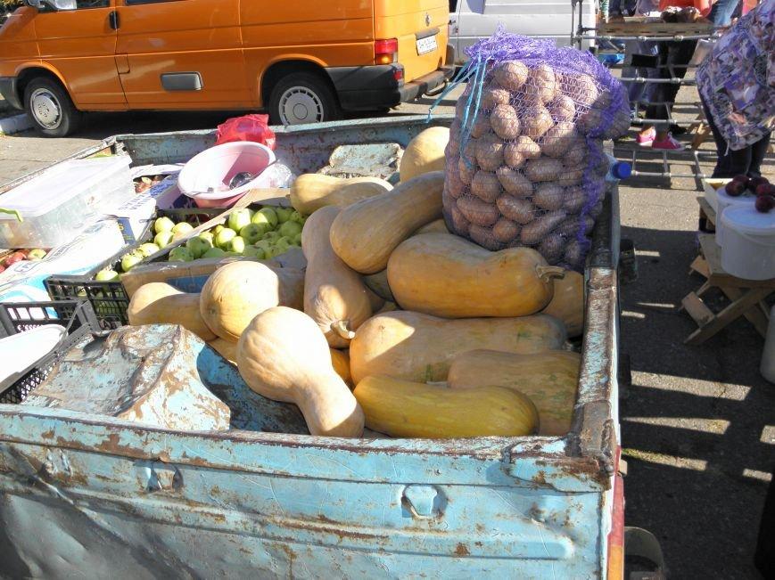 В Краматорске открылась сельскохозяйственная ярмарка «Краматорская осень» (фото) - фото 11